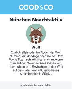 What's your spirit animal? According to Good&Co's personality quiz, mine is Wolf! Find yours: Mans Best Friend, Best Friends, Wolf, Alpha Dog, Your Spirit Animal, Insight, Personality, Finding Yourself, How To Get