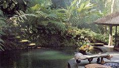 calm Ubud, Balinese Garden, Spa Day, Garden Styles, World, Places, Painting, Image, Calm