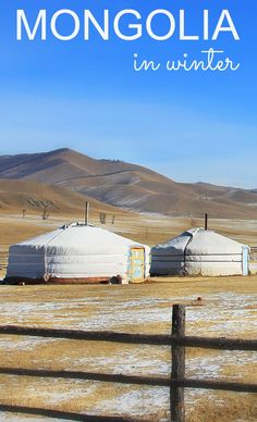 travel to Mongolia in the winter