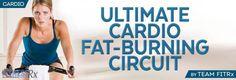 Ultimate Cardio Fat-Burning Circuit