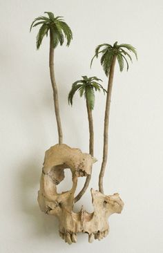 i should hope one day my skull will also grow midget palm trees