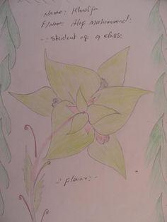 Khadeja Alef Mohammad, táto slečna má 15 rokov, názov obrázka - Kvet