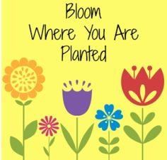 Bloom where you are planted.