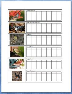 Free Printable Flashcards And Checklist For 18 Common Backyard Birds Of Tennessee