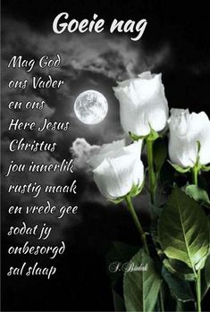 Good Night Prayer, Good Night Blessings, Good Night Wishes, Evening Quotes, Night Quotes, Afrikaanse Quotes, Goeie Nag, Jesus Christus, Labrador Retriever Dog