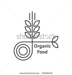 organic food logo with thin line wheat ears. concept of rice, gluten, bio, herbal badge, brewery, bakery mark. isolated on white background. flat style trend modern brand design vector illustration