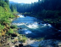 If you are a fly fisherman, you must try the salmon fly hatch on the Deschutes River in Central Oregon, United States.