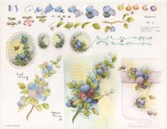Gladys Galloway China Painting Study No 19 Blueberries Pattern Instructions | eBay