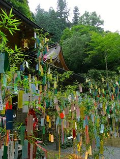 happy tanabata festival day