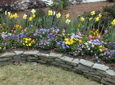 Low dry stack thin stone wall border annual bed.jpg 666×498 pixels