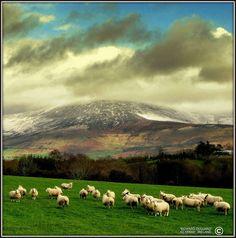 County Kilkenny