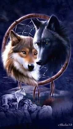 Dreamcatcher Wolves T-Shirt - Wolf T-Shirts - Big Face Wolf T-Shirts - Wolves on t-shirts - wolf shirts - beautiful wolves - animal shirts with wolves - christmas presents - ideas for christmas presents Tier Wallpaper, Wolf Wallpaper, Animal Wallpaper, Wallpaper App, Artwork Lobo, Wolf Artwork, Wolf Love, Beautiful Creatures, Animals Beautiful