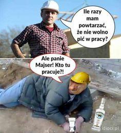 Wtf Funny, Haha, Funny Pictures, Jokes, Humor, Meme, Fanny Pics, Husky Jokes, Ha Ha