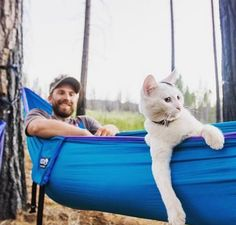 "This ""Camping With Cats"" Instagram account is almost too cute to handle, but you should try anyway"