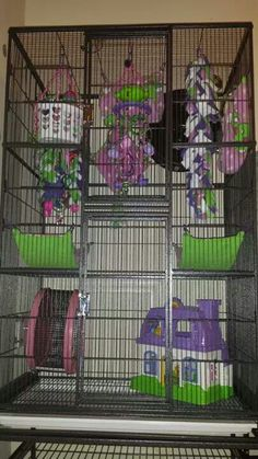 I need to do this to my sugar gliders cage!