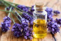 Roman Chamomile, Chamomile Tea, Psychic Development, Oil Diffuser, Natural Health, Aromatherapy, Essential Oils, Perfume Bottles, Healing