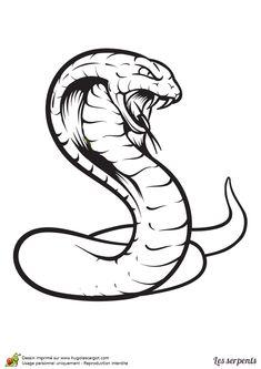 Dragon Tattoo Stencil, Tattoo Stencils, Snake Drawing, Snake Art, Cartoon Drawings, Cute Drawings, Ouroboros Tattoo, Bear Tattoos, Music Tattoo Designs