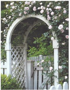 Wooden Garden Arches Australia - Home Decorating Ideas Garden Archway, Garden Gates, Garden Entrance, Rose Arbor, White Picket Fence, Picket Fences, Modern Pergola, Climbing Roses, Wooden Garden
