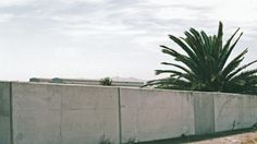 Roll #4 | Pentax ME Super | March 2015 | 50mm 1.7 | Superia 400 | Cape Town