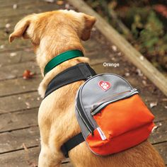 "ClassyRuff Backpack for Dogs - Dog backpack perfect for letting your ""classy"" dog carry his gear"
