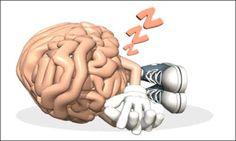 cerebro61
