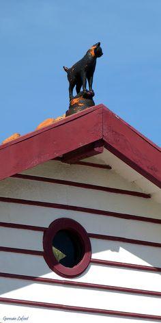 Detalle de Costa Nova