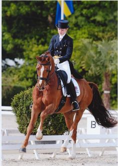 ..... I miss riding dressage so much.......