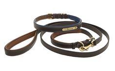 Leather Padded Dog Collar & Leash