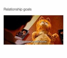 The 50 Best Relationship Memes - Funny Memes Funny Love, Stupid Funny, Cute Love, Funny Stuff, Funny Drunk, Drunk Texts, 9gag Funny, Funny Gifs, Fun Funny