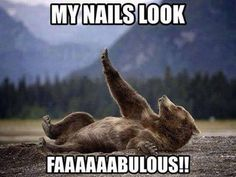 Funny animal pictures with 20 pics like bear showing off his nails. Funny animal pictures with captions. Animal Jokes, Funny Animal Memes, Cute Funny Animals, Funny Animal Pictures, Funny Cute, Funny Photos, Funny Shit, Funny Memes, Hilarious