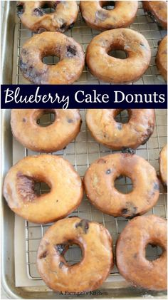Blueberry Cake Donuts are so easy to make using simple ingredients and fresh blueberries. MAKE ahead of time! Homemade Blueberry Cake Donuts are so easy to make using simple ingredients and fresh blueberries. MAKE ahead of time! Blueberry Cake Donuts Recipe, Blueberry Desserts, Blueberry Breakfast, Breakfast Cake, Homemade Blueberry Muffins, Brunch Cake, Baked Donut Recipes, Baked Donuts, Cake Recipes