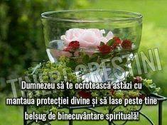 Shot Glass, Spirituality, Tableware, Bible, Dinnerware, Tablewares, Spiritual, Dishes, Place Settings