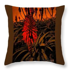 Throw Pillow featuring the photograph Blooming In The Dark 02 by Dora Hathazi Mendes #aloe #succulent #throwpillow #dorahathazi