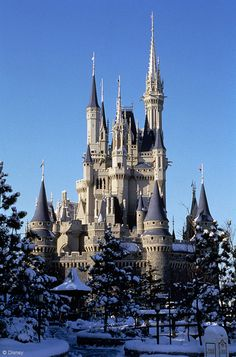 Rare Tokyo Disney Resort Photos Shared by Walt Disney Imagineering