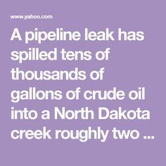 A pipeline leak has spilled tens of thousands of gallons of crude oil into a North Dakota creek roughly two and a half hours from Cannon Ball, where protesters are camped out in opposition to the Dakota Access pipeline.