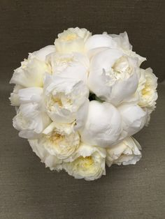 peony and patience garden rose fragrant white wedding bouquet - White Patience Garden Rose