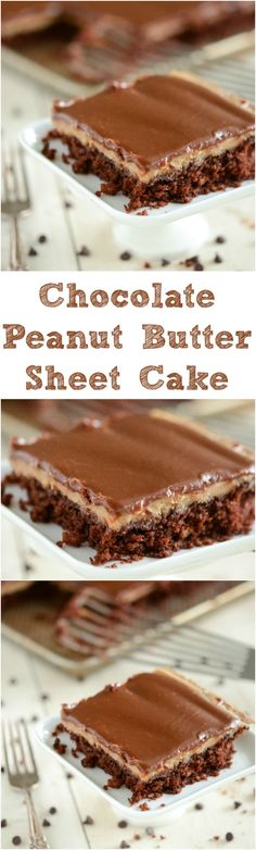 Chocolate and Peanut Butter Sheet Cake: starts with a one bowl moist chocolate cake, then a layer of creamy peanut butter frosting and finished with a layer of rich dark chocolate ganache! Peanut Butter Sheet Cake, Peanut Butter Frosting, Peanut Butter Recipes, Easy Desserts, Delicious Desserts, Sheet Cake Recipes, Sheet Cakes, Muffins, Just Cakes