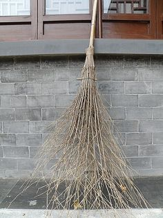 Chinese broom - WANT! I love twig brooms.