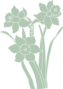 Botanique daffodils by American Crafts