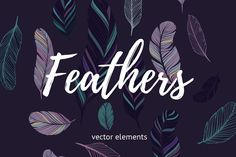 Vector Feathers Set - Objects - 1