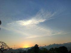 """115 curtidas, 2 comentários - Eder  Motta (@eder_motta) no Instagram: """" #sunset #nature #sun #tree #instagood#botanical #montain #horizon #sky #clouds #cloud #fimdetarde…"""""""