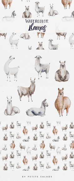 Watercolor Llamas - Illustrations Watercolor Llamas - Illustrations - 1 Watercolor Llamas - Illustrations - 2 Watercolor Llamas - Illustrations - 3 Watercolor Llamas This pack includes : 7 unique hand-painted llamas in transparent PNG/EPS formats. 1 high definition seamless pattern (3000x3000px tile). 300 DPI High quality images.