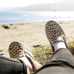 Leopard loving! The new Vans Classic Slip on in leopard print.  http://www.shoeconnection.co.nz/products/VAUIVA1X0ZX