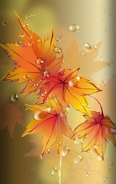 New The Most Beautiful Fall Season Wallpaper for iPhone XS Max – Wallapapers for iPhone