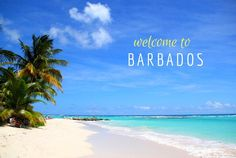 Barbados: All holiday travel information for your vacation! Activities, where to stay, eat and shop. Island events, tours, maps, pictures, stories, people and much more.