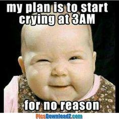 Quel est le plan de bébé - drôle i - #Bébé #Drôle #est #plan #Quel Baby Memes, Funny Baby Jokes, Cute Funny Babies, Baby Quotes, Crazy Funny Memes, Funny Relatable Memes, Funny Kids, Baby Humor, Baby Sayings