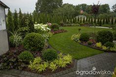 Ogród mały, ale pojemny;) - strona 64 - Forum ogrodnicze - Ogrodowisko