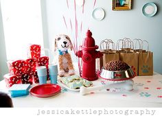 puppy party. Beyond in love with this. I need a little boy so I can do it!