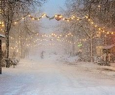 White and lights...I just want to walk my dogs down this street in the crisp quiet of the night. Ditto!