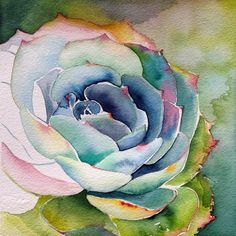 Watercolor Painting on Paper Watercolor Projects, Watercolor Artists, Watercolor Paintings, Watercolors, Watercolor Portraits, Abstract Paintings, Watercolor Succulents, Watercolor Cactus, Succulents Painting